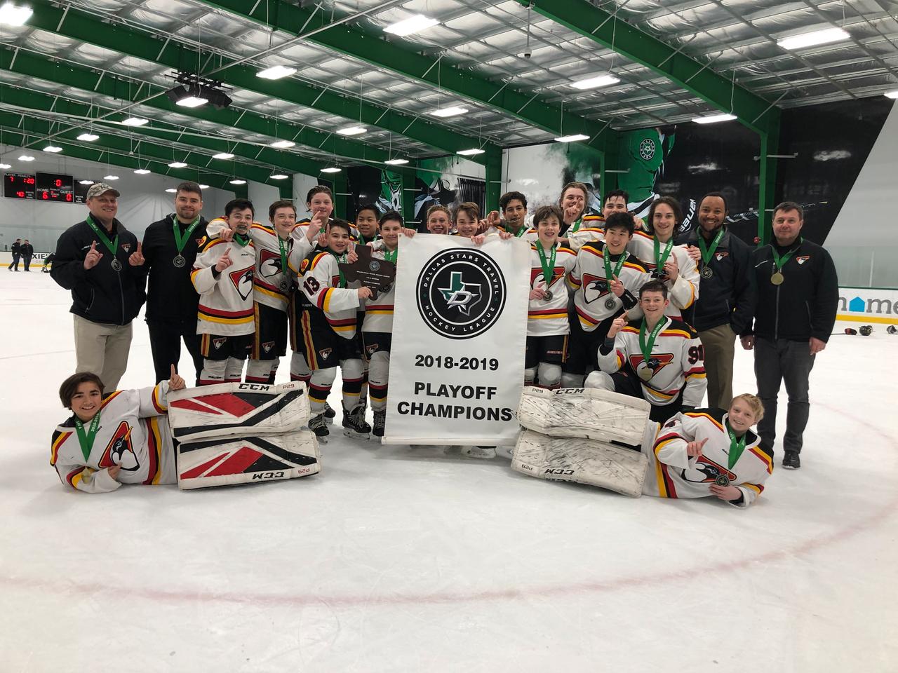 2019 Dsthl 14u A Playoff Champions Dallas Stars Travel Hockey League