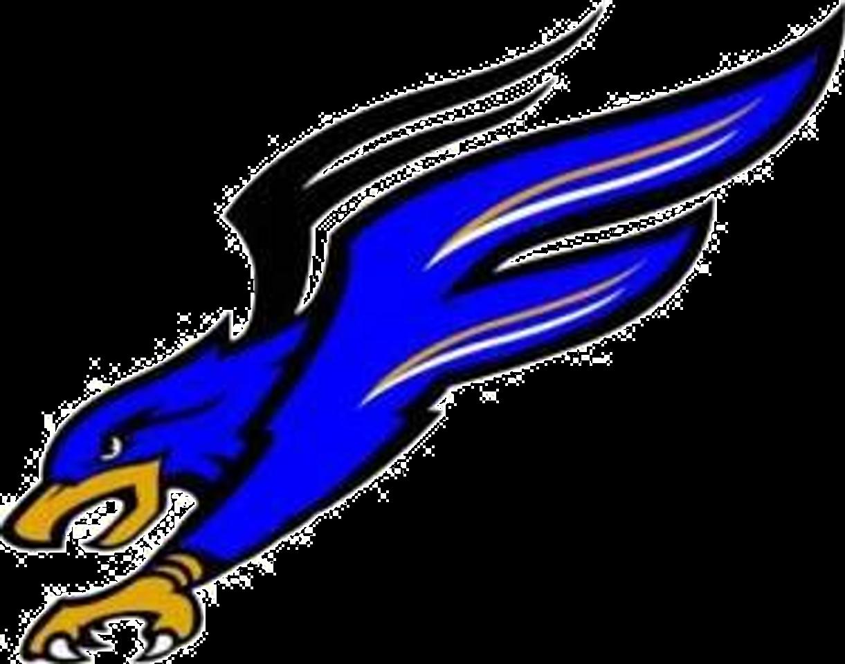 Florida Falcons Are Back Gridiron Developmental Football League